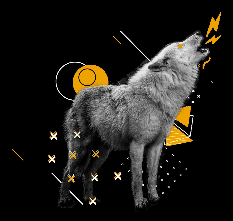 lobo-formulario
